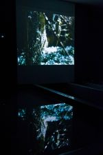 Installation view of Embodied Space 2010 by Ella Condon